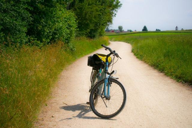 Portrait de mon vélo, by Iara Vega Linhares